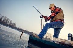 Brochet de poissons de crochet de pêcheur sur la rivière congelée en hiver Image libre de droits