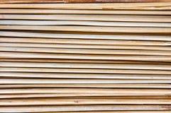 Brochette de bambou Photographie stock libre de droits