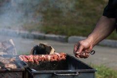 Brochettes avec de la viande Images stock