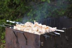 Brochettes avec de la viande sur le gril de barbecue Photos stock