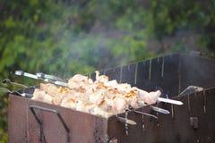 Brochettes avec de la viande sur le gril de barbecue Image libre de droits