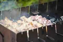Brochettes avec de la viande sur le gril de barbecue Photos libres de droits