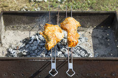 Brochettes de barbecue Images libres de droits