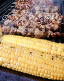 Brochettes de viande Photographie stock libre de droits