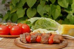 Brochettes de viande Images stock