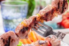 Brochettes de viande avec les raccords en caoutchouc et la salade Photos libres de droits
