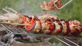 Brochettes et barbecue en nature clips vidéos