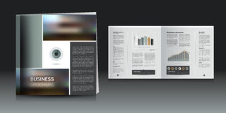 Brochure, annual report layout Royalty Free Stock Image