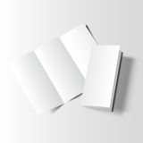 Brochure blank mockup two stock illustration
