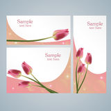 Brochure cards with red tulips Royalty Free Stock Photography