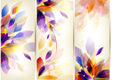 Brochure Colorful Set Royalty Free Stock Photo