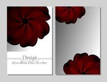 Brochure de beauté Fleur rouge Illustration de Vecteur