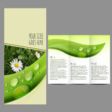 Brochure design template with nature picture. Green, nature brochure design template Stock Illustration