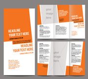 Brochure design template vector trifold