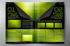 Brochure design two pages a4 template Royalty Free Stock Photos