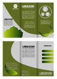 Brochure folder leaflet bio eco green leaf nature abstract element Stock Images