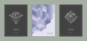 Brochure géométrique, insecte, calibre, identité d'entreprise illustration stock