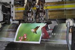 Brochure stitching process. Motion blur, brochure and magazine stitching unit process. Close-up of the offset conveying process of a full-automatic stitching Stock Photo
