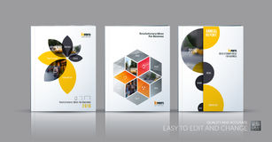 Brochure template layout collection, cover design annual report, stock illustration
