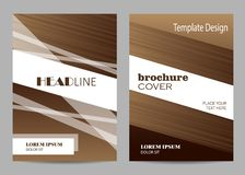 Brochure template layout design. Abstract brown and white striped background. stock photography