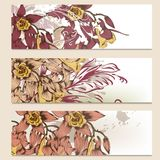 Brochure vector set in floral style Royalty Free Stock Image