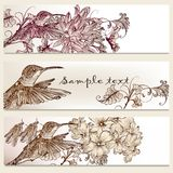Brochure vector set in floral style with humming birds Royalty Free Stock Photography