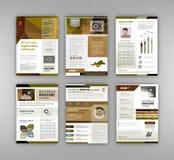 Brochuremalplaatje met infographicselement Stock Afbeeldingen