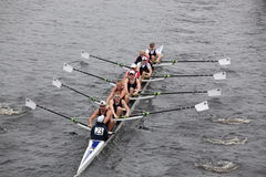 Brock Rowing races in the Head of Charles Reg Stock Image