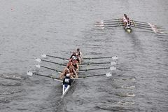 Brock Rowing races in the Head of Charles Reg Stock Images