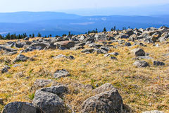 On the Brocken, Harz, Germany. View of stone landscape on the mountain Brocken in national park Harz, Germany Royalty Free Stock Images