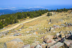 On the Brocken mountain Royalty Free Stock Photography