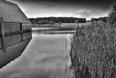 Brockholes-Naturreservat Lizenzfreie Stockbilder