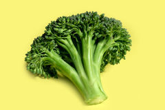 Brocoli Stock Photography