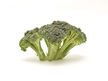Brocoli. Photography studio with white background royalty free stock photography