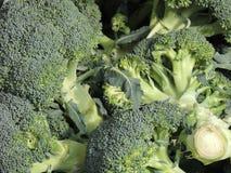Brocoli (brassica oleracea) Photo stock