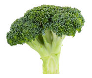 Brocoli cru d'isolement sur le fond blanc Photo libre de droits