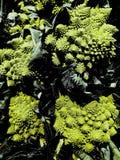 Brocoli de Romanesco sur le marché photo stock