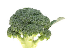 Brocoli frais Photos stock