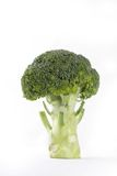 Brocoli on white background Stock Images