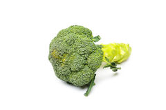 Brocoli on a white background Stock Photography