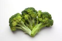 brocoliflorets organiska tre Royaltyfri Fotografi