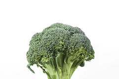 Brocolli Stock Image
