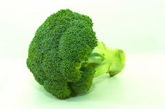 Brocolli bunch, isolated. Single large brocolli on it's side, on white background royalty free stock photography