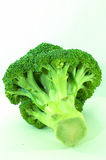 Brocolli bunch, isolated. Single large brocolli on it's side, on white background Royalty Free Stock Images