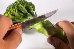 Brocolli cortou com faca Holded pela pessoa no fundo branco Fotos de Stock Royalty Free