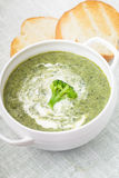 Brocolli cream soup Royalty Free Stock Images