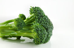 Brocolli Floret Stock Photo