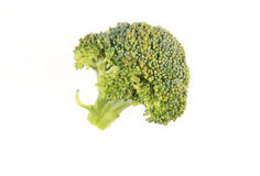 Brocolli floret Royalty Free Stock Photo