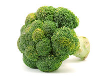 Brocolli Stock Photography