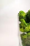 Brocolli verde no vidro de Transparant no fundo branco Imagens de Stock